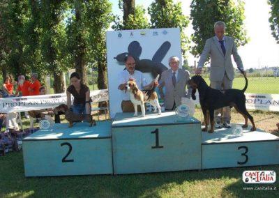 NDS di Argenta 2008: Nikoletta di Casa Mainardi 2° BOG