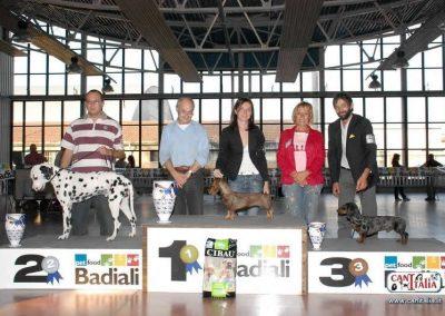NDS di Faenza 2009: Nikoletta di Casa Mainardi 1° BOG