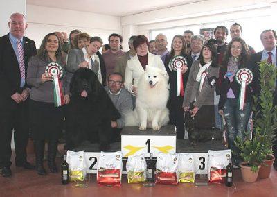 NDS di Fermo 2011: Beata di Casa Mainardi 3° BIS