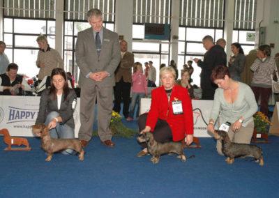 Campionato Sociale di Budapest 2008: Nikoletta di Casa Mainardi BOS e Campione Sociale