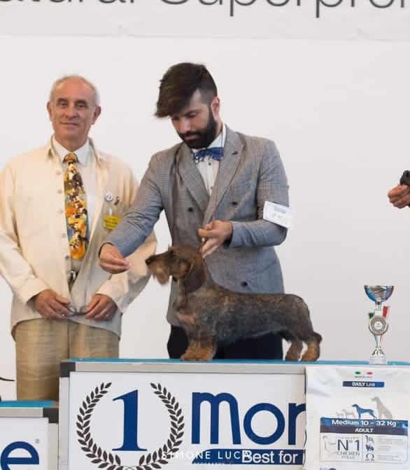 NDS di Legnano del 26/07/2019
